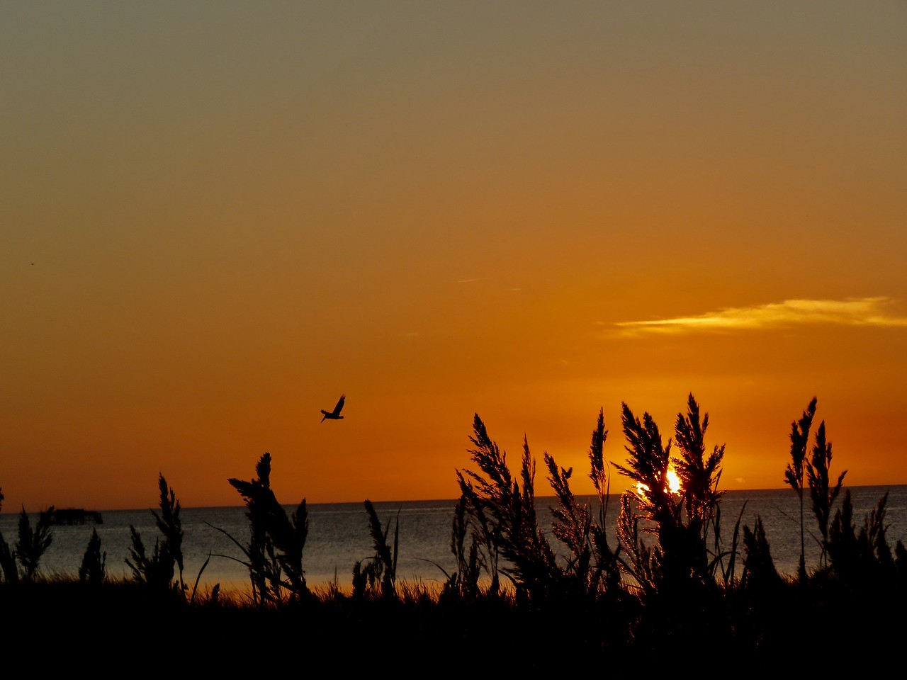 Sunset on the Outer Banks