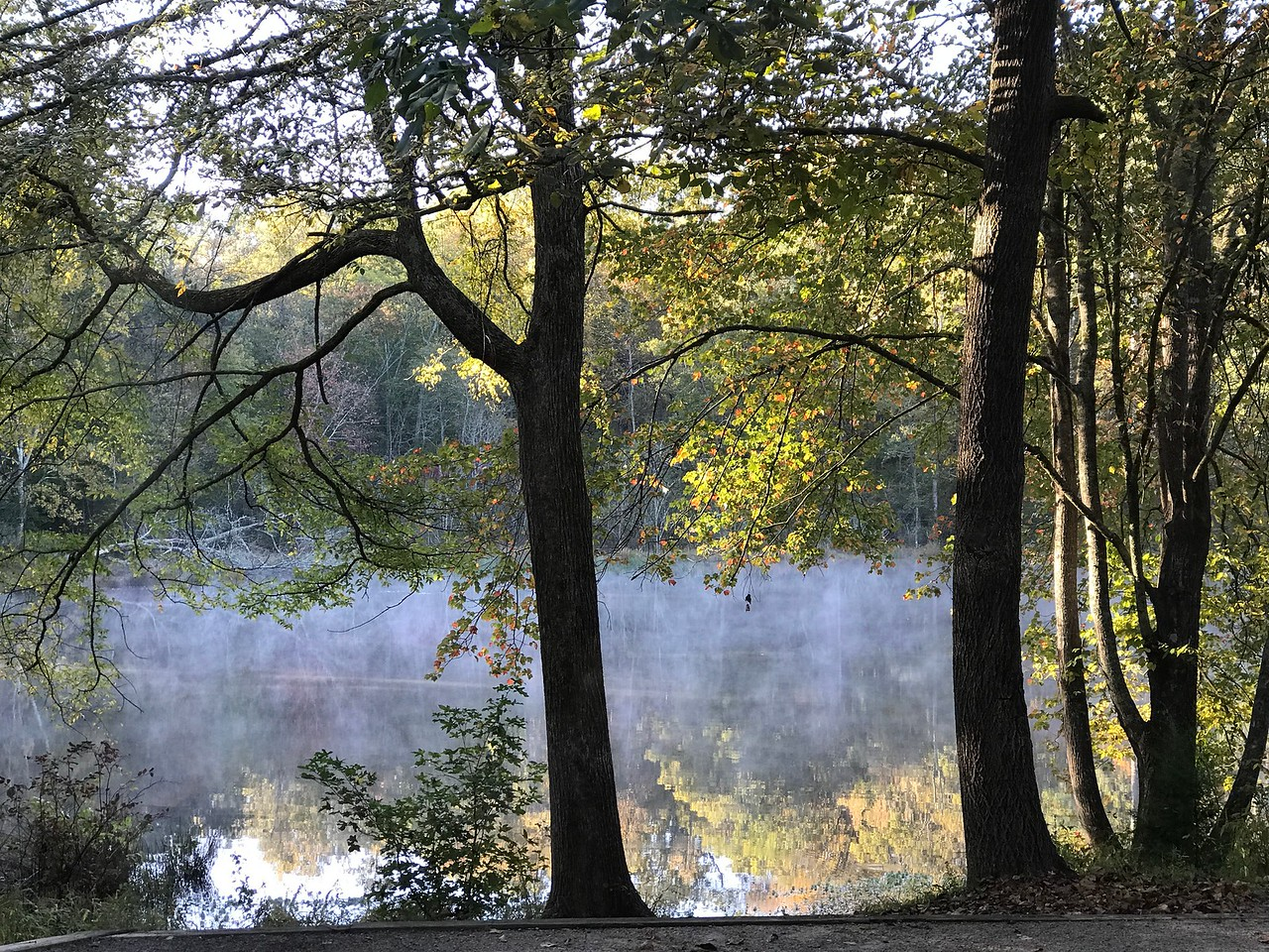 Early morning fog & reflections from our camper window.  Sweet.  Kings Mt SP, Blacksburg, SC