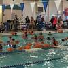 Pumpkins in the pool- watersafety-psm