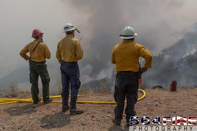 150822 SQF Rough Fire-16