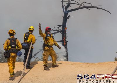 150822 SQF Rough Fire-19