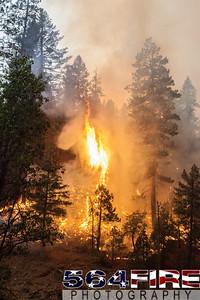 130824 STF Rim Fire-123