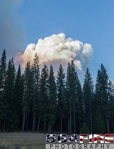 130824 STF Rim Fire-124