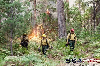 130824 STF Rim Fire-118