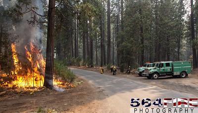 130824 STF Rim Fire-116