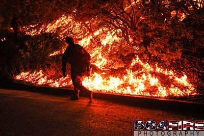 130824 STF Rim Fire-102