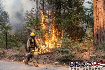 130824 STF Rim Fire-117
