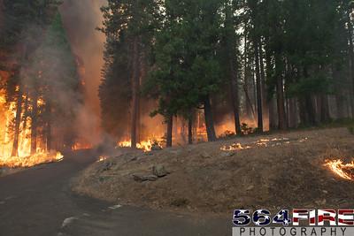 130824 STF Rim Fire-121