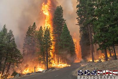130824 STF Rim Fire-120