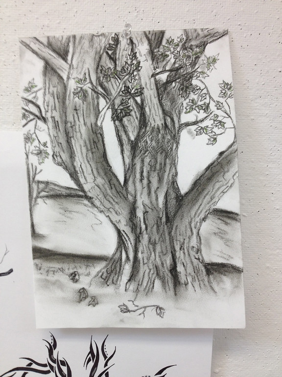 Drawing 2- Trees