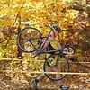 10-20-2012 Buckner CX-106