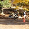10-20-2012 Buckner CX-184
