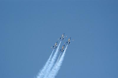 Blue Angels 07-0095