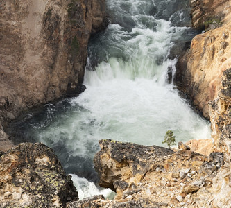 Grand Canyon of the Yellowstone - P4