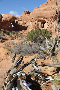 Arches NP-5473