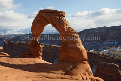 Arches NP-5556