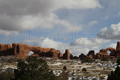 Arches NP-5446