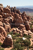 Arches NP-7141