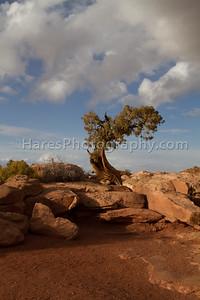 Canyonlands NP-4964