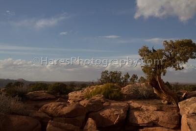 Canyonlands NP-4966