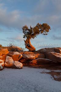 Canyonlands NP-5184