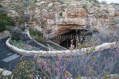 Carlesbad Caverns - Guadelupe NP-9673