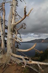Crater Lake NP2-8502