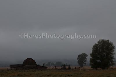 Grand Teton NP- 2015-1497