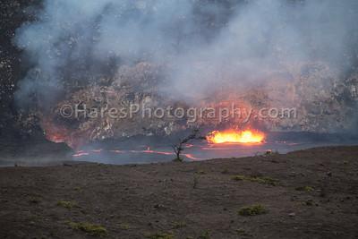 Hawai'i Volcanoes-2569