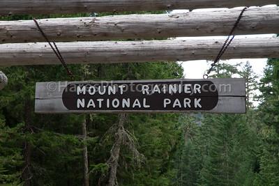 Mount Rainier-4539