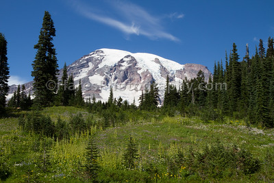 Mount Rainier-4691