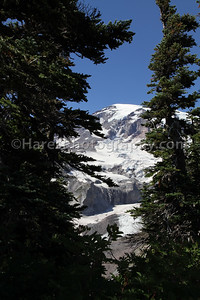 Mount Rainier-4789