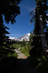 Mount Rainier-4699