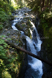 Olympic NP-7801