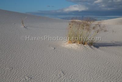 White Sands-0243