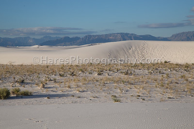 White Sands-0217