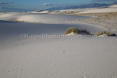 White Sands-0233