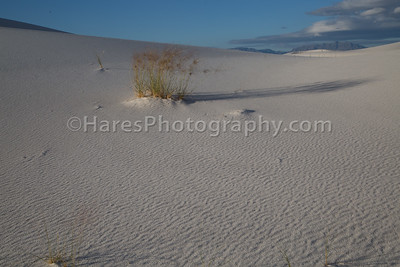 White Sands-0241