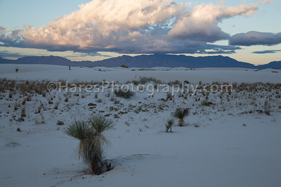 White Sands-0161