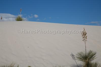White Sands-0272