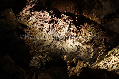 Wind Cave NP - Jewel Cave NM-2621