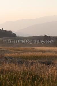 Yellowstone NP-9986