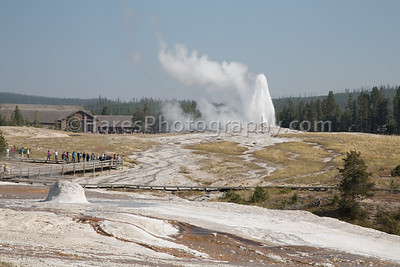 Yellowstone NP-0362