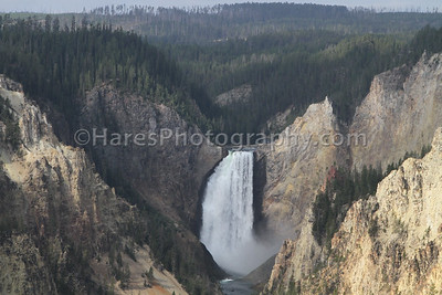 Yellowstone-1769