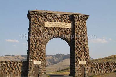 Yellowstone-1484