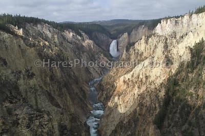 Yellowstone-1764