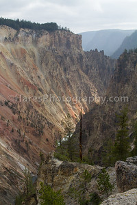 Yellowstone-1766