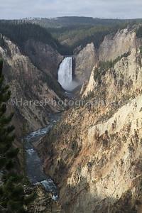 Yellowstone-1761