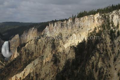 Yellowstone-1774