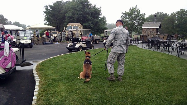 Air Force K9 Security dog presentation